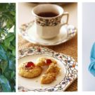 11月1日に紅茶の日オンラインセミナー/日本紅茶協会