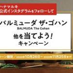 人気デリスタグラマーが「液体塩こうじ」レシピを公開/ハナマルキ