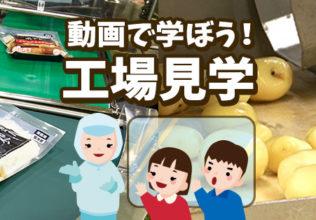 小学生向けの食育用「工場見学」動画/ケンコーマヨネーズ