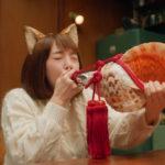 どんぎつねさんが、ほら貝ブォ〜ン/日清食品