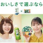 「綾鷹」×「どん兵衛」がコラボ/コカ・コーラ